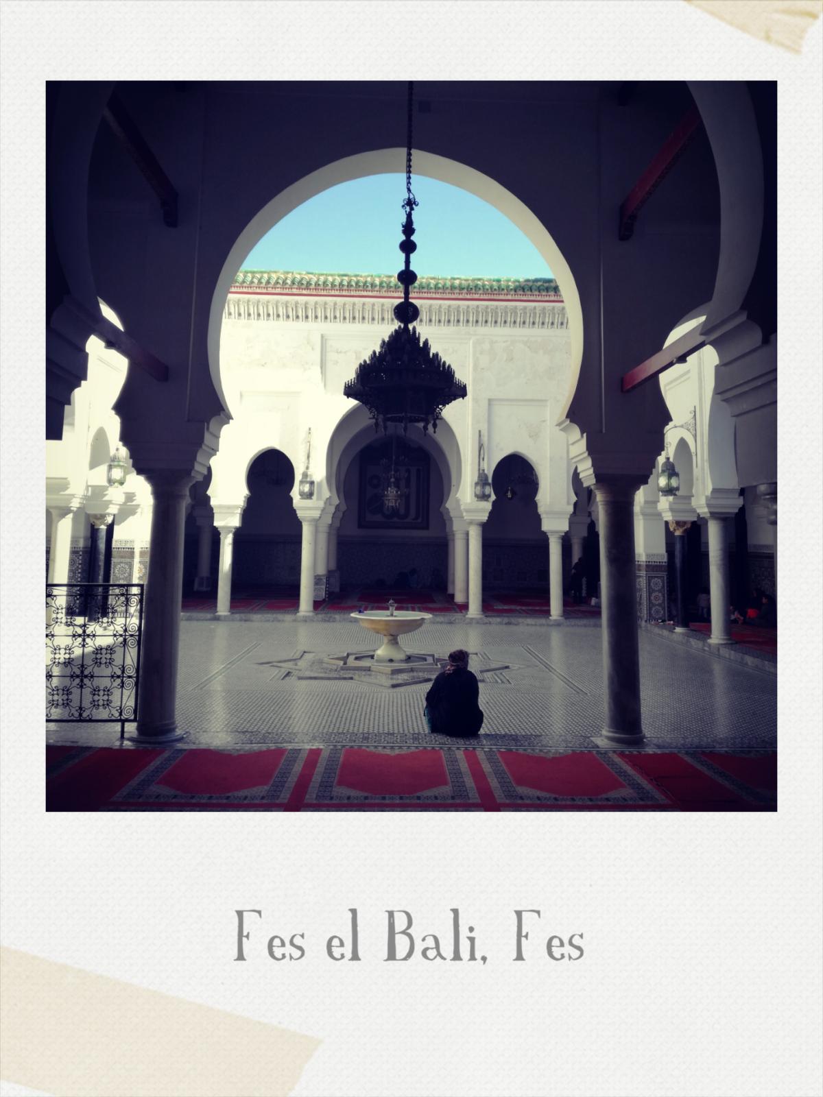 Fes el Bali _ Fes, 21 febbraio